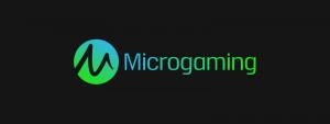 Microgaming ohjelmistokehittäjä
